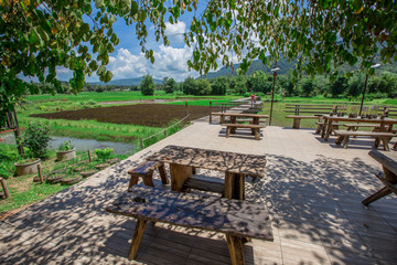 Cafe DE MENA: September 16, 2018, female travelers Traveling in Loei province, stop eating, walk the field on a long wooden bridge, the atmosphere close to nature, Thailand.