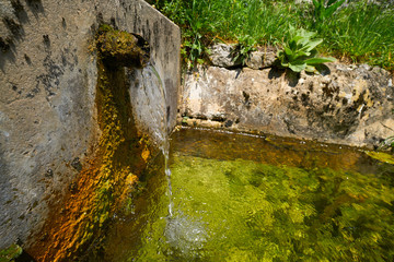 Natural spring fountain in Picos de Europa Asturias