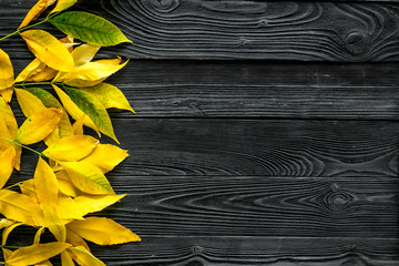 Autumn colors concept. Mockup with yellow leaves on grey background top view copy space