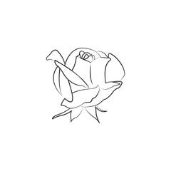 rose logo icon design template vector