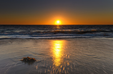 Liquid Gold Sunrise Seascape