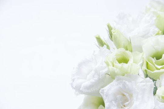 トルコキキョウ 花束