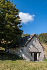La natura dell'alta Val Vigezzo, Val d'Ossola, Verbania, Piemonte, Italia