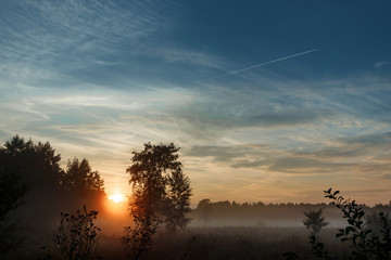 Beautiful foggy landscape, sunset. The fog glowing in the sunlight, above the meadow grass.