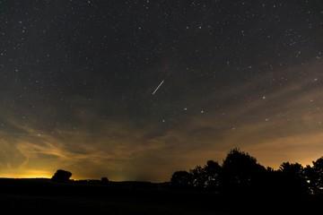 Sternzeichen großer Wagen im Sommer in der Nacht der Perseiden  Bayern, Deutschland