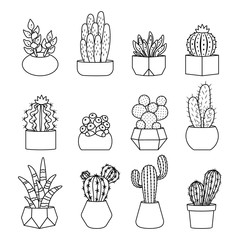 Cartoon line style cactus and succulents vector set. Decirative flowers and plants in pots. Isolated icons illustration