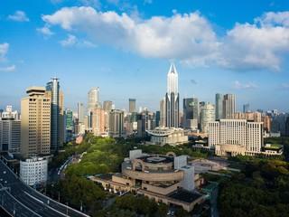 Skyline of urban Shanghai city in the morning