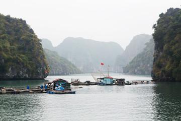 Fototapeta Local fishermen`s boats at Cat Ba island in Ha Long bay, Vietnam obraz