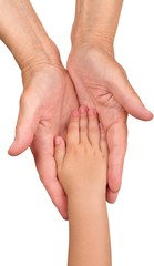 Elderly and Child Hands Holding Together