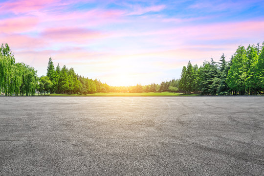 Empty asphalt road and green woods at sunset