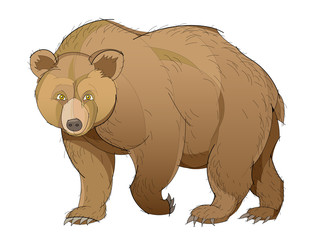 Fantasy illustration of cute brown bear on white background. Hand-drawn vector image.