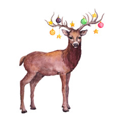 Deer animal with decorative baubles on horns. Watercolor