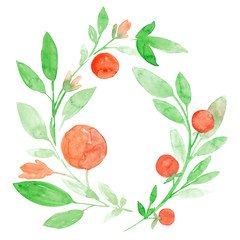 Hand drawn watercolor illustration of green branches with leaves and orange peaches. Isolated on white watercolor artistic floral clip art.