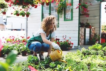 Florist watering a plants