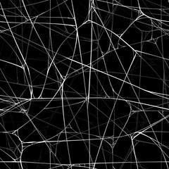 Seamless realistic background with web of spider.