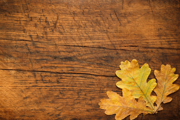 close-up image of autumn leaves on a wood background