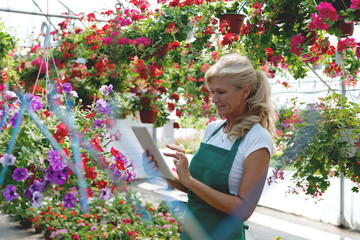 Senior florist holding digital tablet