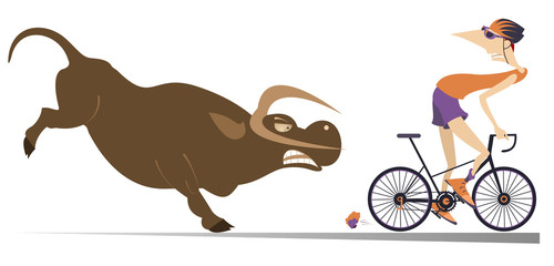 Keuken foto achterwand Stierenvechten Angry bull and cyclist cartoon illustration. Frightened cyclist escapes from the angry bull isolated on white illustration