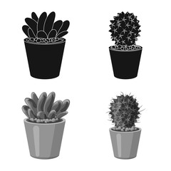 Vector illustration of cactus and pot icon. Collection of cactus and cacti vector icon for stock.