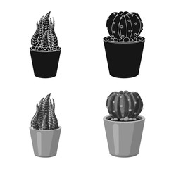 Isolated object of cactus and pot logo. Collection of cactus and cacti stock vector illustration.