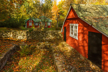 Cottage in a garden with a garden shed with autumn colors