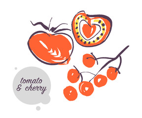 Vector hand drawn illustration of fresh raw tomato vegetable isolated on white background. Sketch style. Healthy food element. Good for menu, banner, packaging design etc.