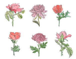 Watercolor set poppy, chrysanthemum and rose flower with leaves
