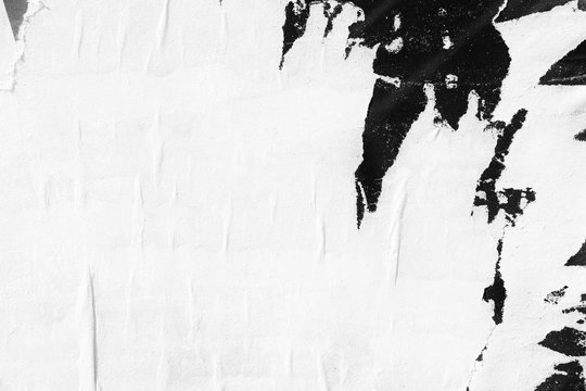 White paper ripped torn background blank creased crumpled posters placard grunge textures surface backdrop / Space for text
