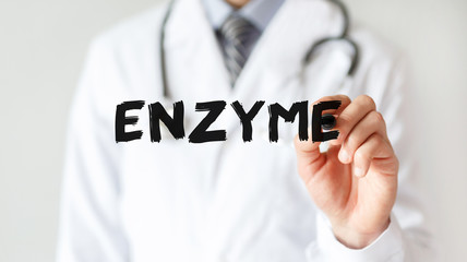 Doctor writing word ENZYME with marker, Medical concept