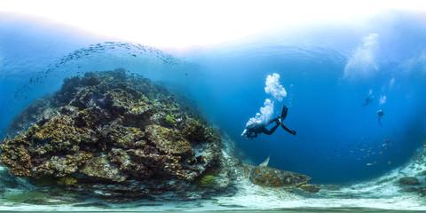 360 sea turtle in Galapagos