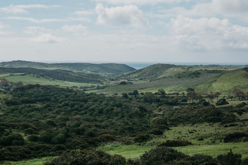 A beautiful natural landscape with green trees on a hilly terrain against a blue sky on a sunny summer day in Portugal.