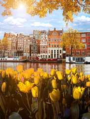 Papiers peints Amsterdam Beautiful Magic Autumn Landscape in Amsterdam, Holland with tulips. amazing places. popular tourist atraction
