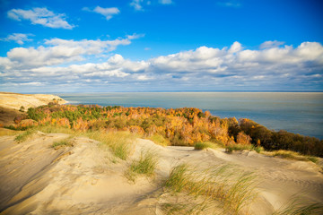 autumn in the dunes of Curonian Spit