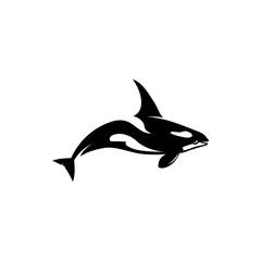 Killer Whale vector silhouette