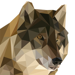 Wolf low poly, geometric animal vector