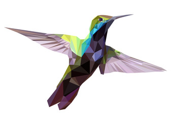 Hummingbird low poly design, geometric design