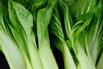 Fresh Bok choy or pak choi and water drop on wooden background and sack cloth.