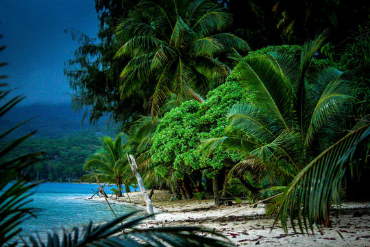 View of a jungle beach on Pele Island, a tiny tropical island with deserted beaches off the north coast of the island of Efate in Vanuatu, in the South Pacific, during a thunderstorm