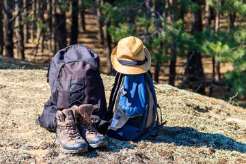 Two tourist backpacks, hiking boots and hat on the glade in pine forest