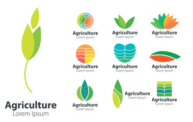 Agriculture Vector Design Logo. Natural Design Logo Concept.