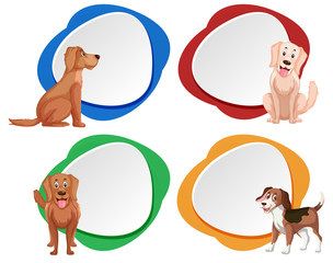 Set of dog banner