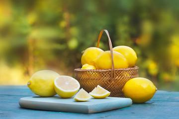 Fresh, ripe lemons in wicker basket. Green nature in background.