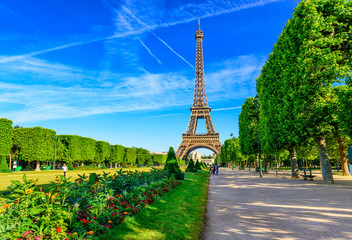 Wall Mural - Paris Eiffel Tower and Champ de Mars in Paris, France. Eiffel Tower is one of the most iconic landmarks in Paris. The Champ de Mars is a large public park in Paris