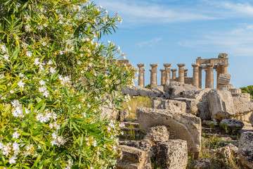Selinunte, Sicily was an ancient Greek city on the south-western coast of Italy.