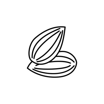 Black & white vector illustration of shelled almond. Line icon of nut. Vegan & vegetarian food. Health eating ingredient. Isolated object
