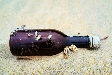 Glass bottle with shells on the beach