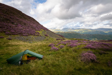 Pitched my tent in a beautiful spot at great langdale Lake District England