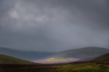 Sunlight shine on the highest youth hostel in England in the middle of the fells and purple heather in the Lake District