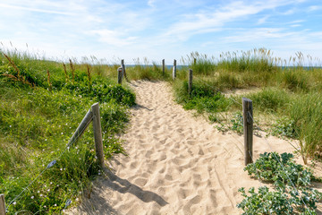 A pathway with many footprints, delimited by wooden posts on the sand dune covered with wild grasses, leading to the du Guesclin beach on the french Brittany seashore.