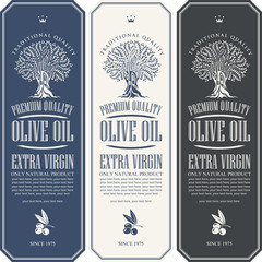 Vector set of three labels for extra virgin olive oil with olive tree, olive sprig and place for text in figured frame in retro style.